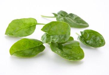 Spinat har gode verdier av både jern og kalsium. Foto: Frukt.no